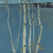 Silver Birches, oil on board 40 x 30 cms