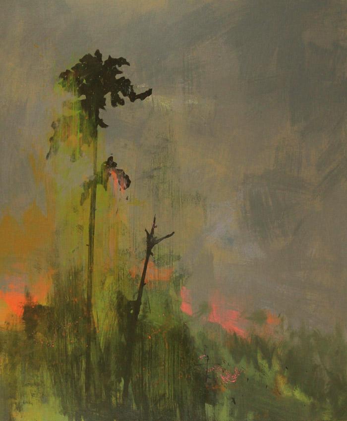 Wild Fire Study, acrylic on canvas 91 x 76 cms POA